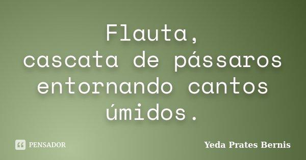 Flauta, cascata de pássaros entornando cantos úmidos.... Frase de Yeda Prates Bernis.
