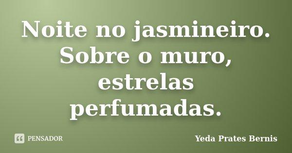 Noite no jasmineiro. Sobre o muro, estrelas perfumadas.... Frase de Yeda Prates Bernis.