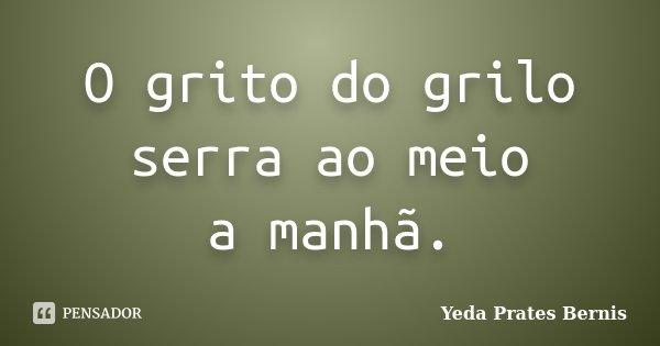 O grito do grilo serra ao meio a manhã.... Frase de Yeda Prates Bernis.