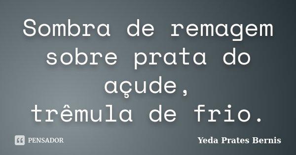 Sombra de remagem sobre prata do açude, trêmula de frio.... Frase de Yeda Prates Bernis.