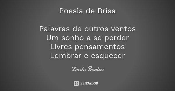 Poesia de Brisa Palavras de outros ventos Um sonho a se perder Livres pensamentos Lembrar e esquecer... Frase de Zade Bretas.