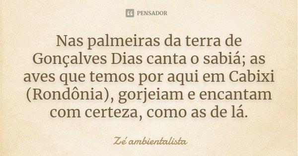 Nas palmeiras da terra de Gonçalves Dias canta o sabiá; as aves que temos por aqui em Cabixi (Rondônia), gorjeiam e encantam com certeza, como as de lá.... Frase de Zé ambientalista.
