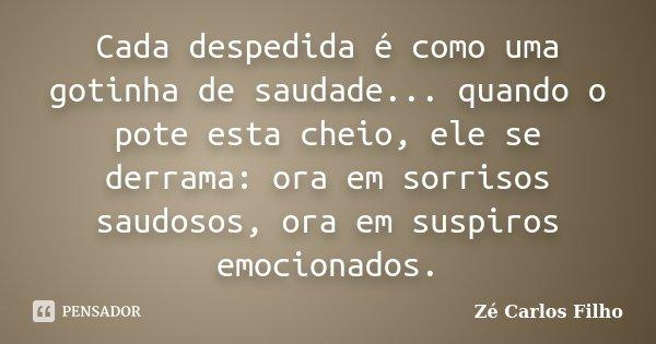 Cada despedida é como uma gotinha de saudade... quando o pote esta cheio, ele se derrama: ora em sorrisos saudosos, ora em suspiros emocionados.... Frase de Zé Carlos Filho.