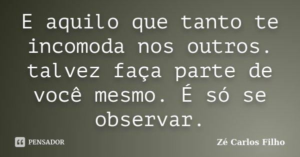 E aquilo que tanto te incomoda nos outros. talvez faça parte de você mesmo. É só se observar.... Frase de Zé Carlos Filho.