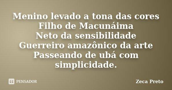 Menino levado a tona das cores Filho de Macunáima Neto da sensibilidade Guerreiro amazônico da arte Passeando de ubá com simplicidade.... Frase de Zeca Preto.
