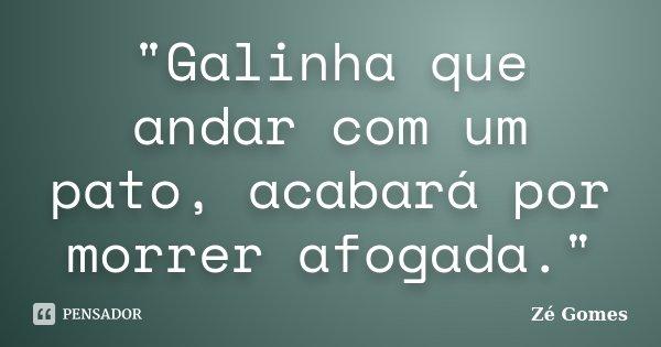 """""""Galinha que andar com um pato, acabará por morrer afogada.""""... Frase de Zé Gomes."""