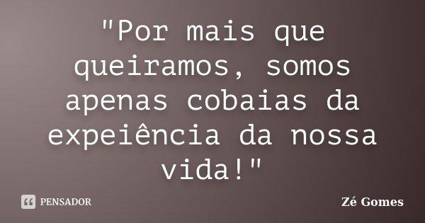 """""""Por mais que queiramos, somos apenas cobaias da expeiência da nossa vida!""""... Frase de Zé Gomes."""