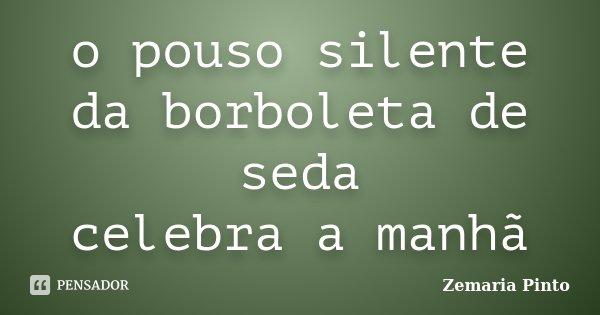 o pouso silente da borboleta de seda celebra a manhã... Frase de Zemaria Pinto.