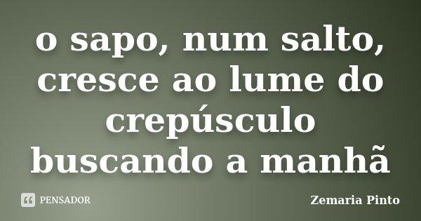 o sapo, num salto, cresce ao lume do crepúsculo buscando a manhã... Frase de Zemaria Pinto.
