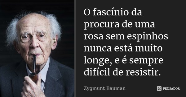 O fascínio da procura de uma rosa sem espinhos nunca está muito longe, e é sempre difícil de resistir.... Frase de Zygmunt Bauman.