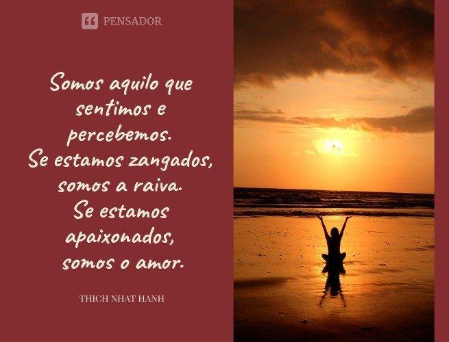 Somos aquilo que sentimos e percebemos. Se estamos zangados, somos a raiva. Se estamos apaixonados, somos o amor.  Thich Nhat Hanh
