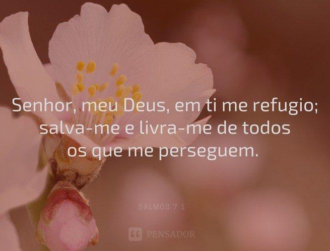 Senhor, meu Deus, em ti me refugio; salva-me e livra-me de todos os que me perseguem.  Salmos 7:1