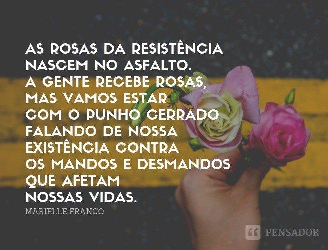 As rosas da resistência nascem no asfalto.