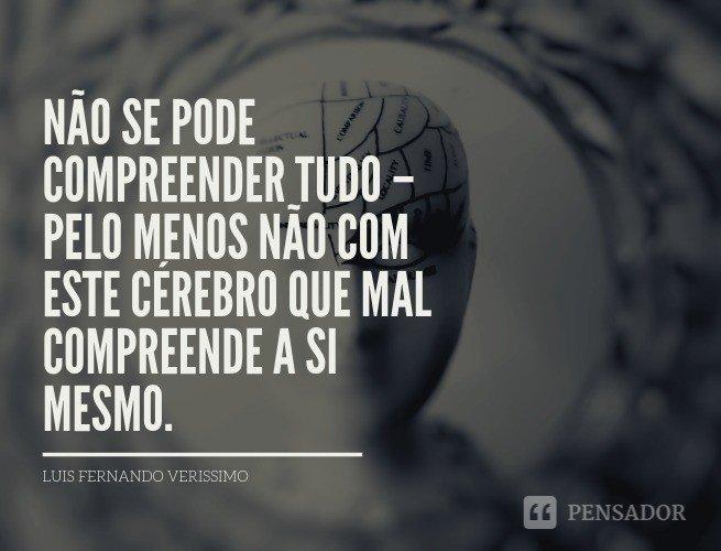 Não se pode compreender tudo – pelo menos não com este cérebro que mal compreende a si mesmo. Luis Fernando Verissimo