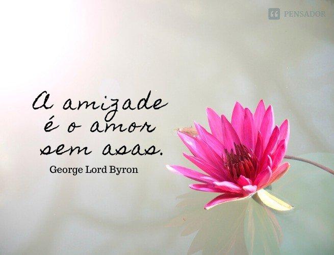 A amizade é o amor sem asas.  George Lord Byron