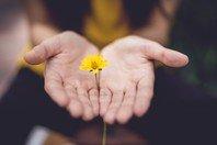 8 conselhos para você alcançar a paz interior e a tranquilidade