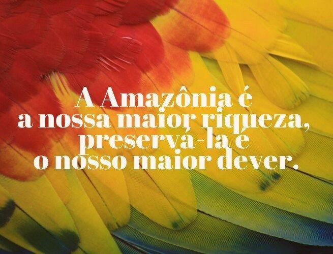 A Amazônia é a nossa maior riqueza, preservá-la é o nosso maior dever.