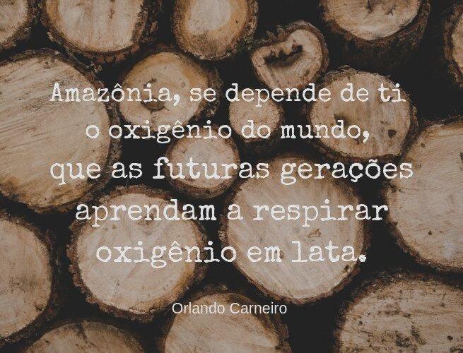 Amazônia, se depende de ti o oxigênio do mundo, que as futuras gerações aprendam a respirar oxigênio em lata.