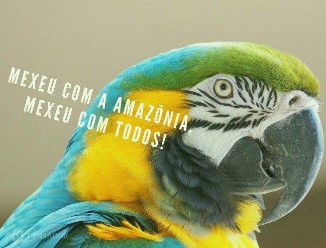 Mexeu com a Amazônia, mexeu com todos!