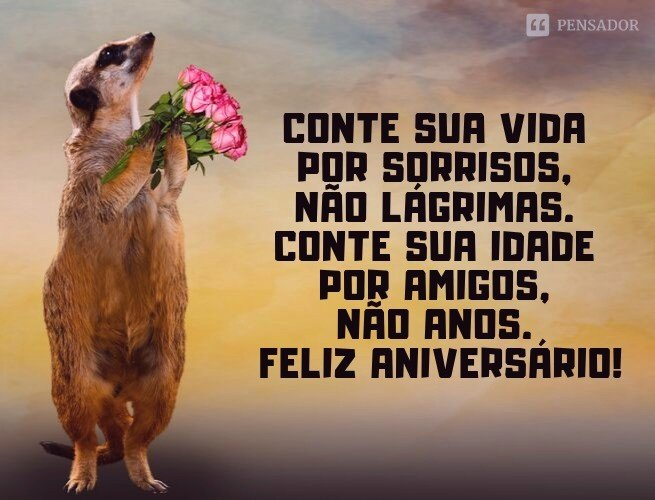 Conte sua vida por sorrisos, não lágrimas. Conte sua idade por amigos, não anos. Feliz aniversário!