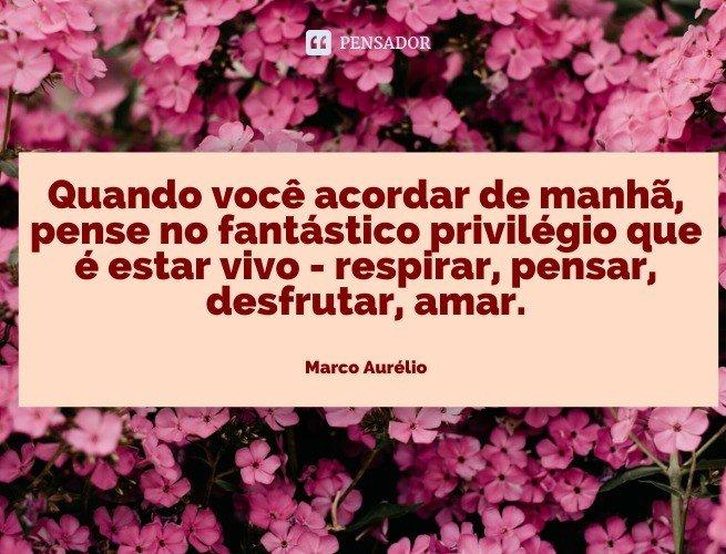 Quando você acorda de manhã, pense no fantástico privilégio que é estar vivo - respirar, pensar, desfrutar, amar.  Marco Aurélio