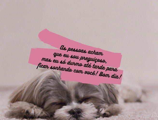 As pessoas acham que eu sou preguiçoso, mas eu só durmo até tarde para ficar sonhando com você! Bom dia!