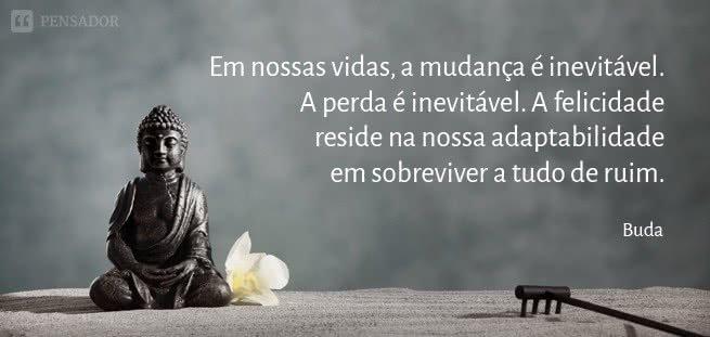 buda_mudanca_inevitavel_perda_felicidade_sobreviver_0.jpg