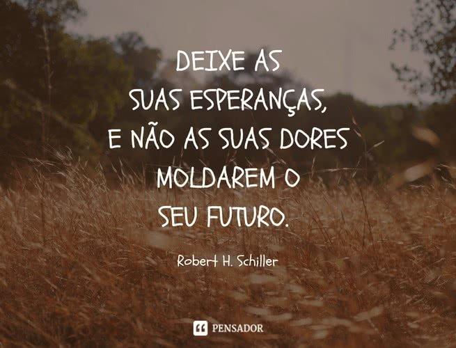 Deixe as suas esperanças, e não as suas dores moldarem o seu futuro. Robert H. Schiller