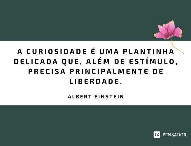 A curiosidade é uma plantinha delicada que, além de estímulo, precisa principalmente de liberdade.  Albert Einstein