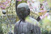 17 frases de Buda que vão inspirar a sua vida
