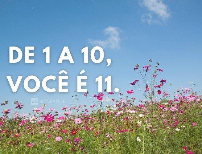 De 1 a 10, você é 11.