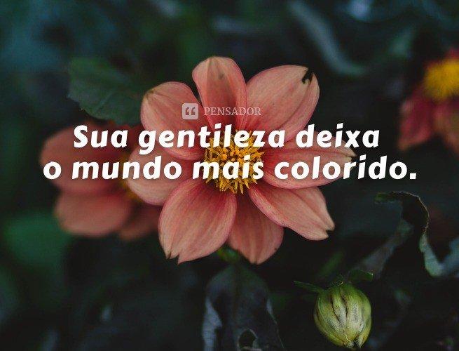 Sua gentileza deixa o mundo mais colorido.