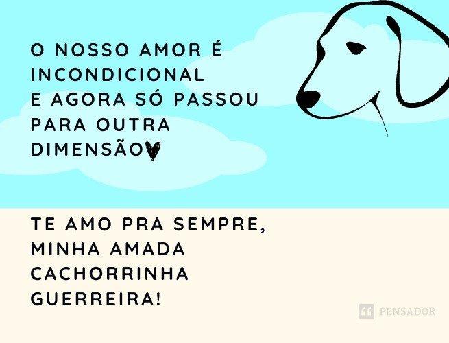 O nosso amor é incondicional e agora só passou para outra dimensão. Te amo, minha amada cadela guerreira!