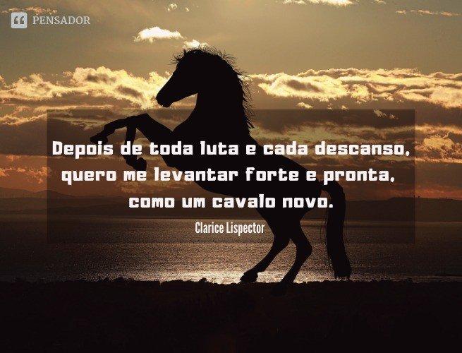 Depois de toda luta e cada descanso, quero me levantar forte e pronta, como um cavalo novo.  Clarice Lispector