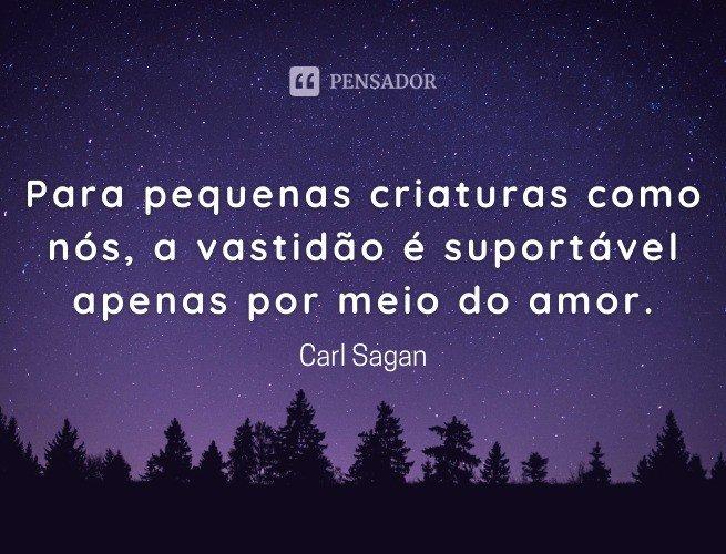 Para pequenas criaturas como nós, a vastidão é suportável apenas por meio do amor.  Carl Sagan
