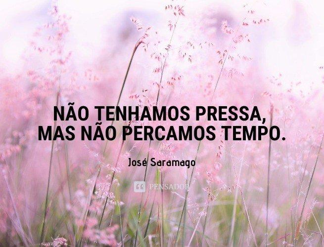 Não tenhamos pressa, mas não percamos tempo.  José Saramago