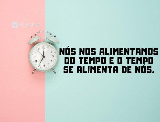 Nós nos alimentamos do tempo e o tempo se alimenta de nós.