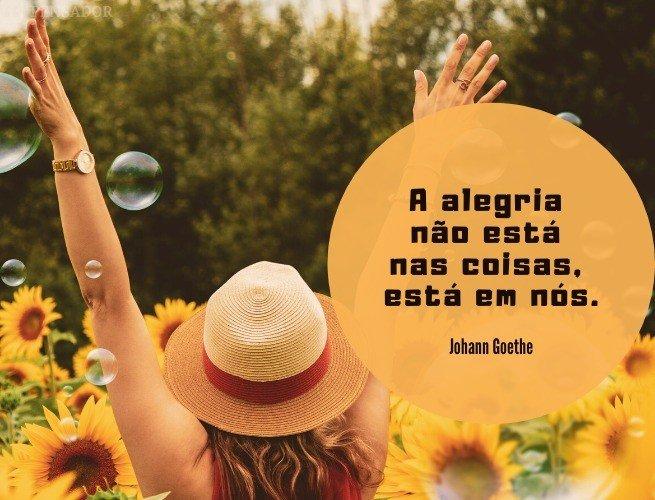 A alegria não está nas coisas, está em nós.  Johann Goethe