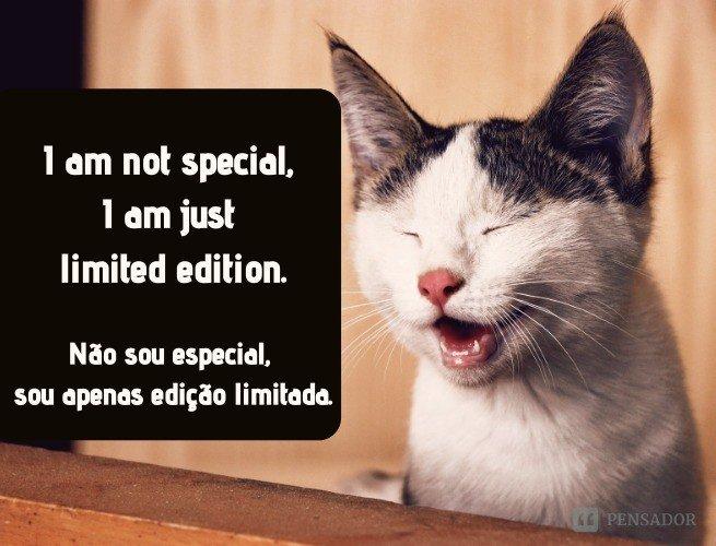I am not special, I am just limited edition.  (Não sou especial, sou apenas edição limitada.)