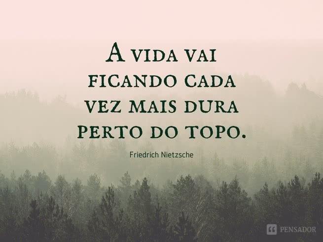 A vida vai ficando cada vez mais dura perto do topo.  Friedrich Nietzsche