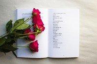 Ama poesia? Conheça 21 grandes poetas brasileiros