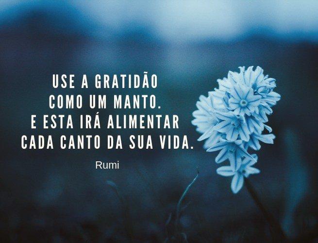 Use a gratidão como um manto. E esta irá alimentar cada canto da sua vida.