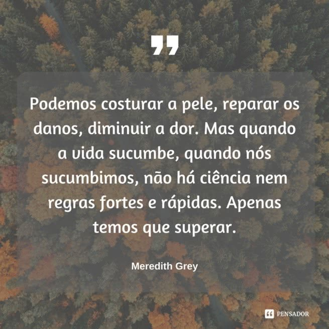 greys anatomy frases 4