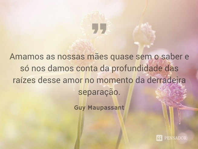 Guy - amor incondicional
