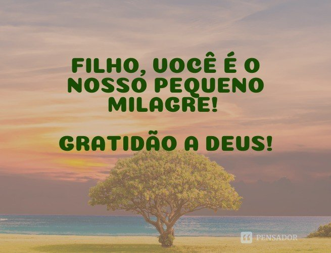 Filho, você é o nosso pequeno milagre! Gratidão a Deus!