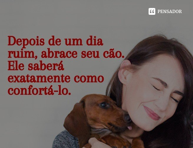 Depois de um dia ruim, abrace seu cão. Ele saberá exatamente como confortá-lo.