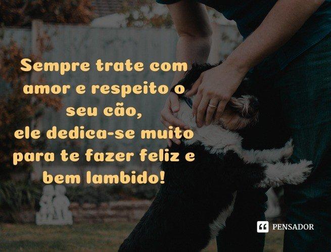 Sempre trate com amor e respeito o seu cão, ele dedica-se muito para te fazer feliz e bem lambido!