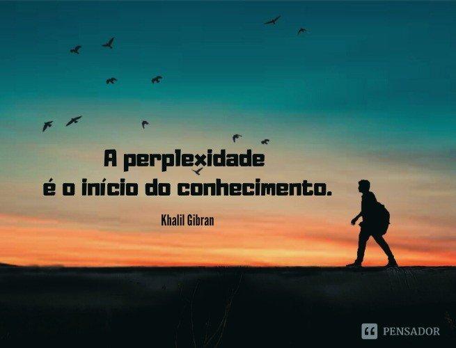 A perplexidade é o início do conhecimento.  Khalil Gibran