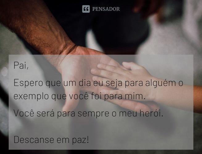 Pai, espero que um dia eu seja para alguém o exemplo que você foi para mim. Você será para sempre o meu herói. Descanse em paz!