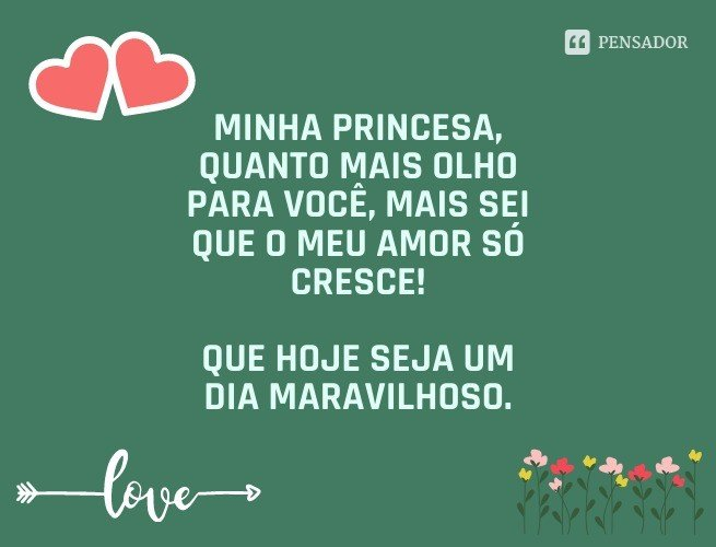 Minha princesa, quanto mais olho para você, mais sei que o meu amor só cresce! Que hoje seja um dia maravilhoso.